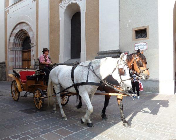 Below the Castle of Salzburg