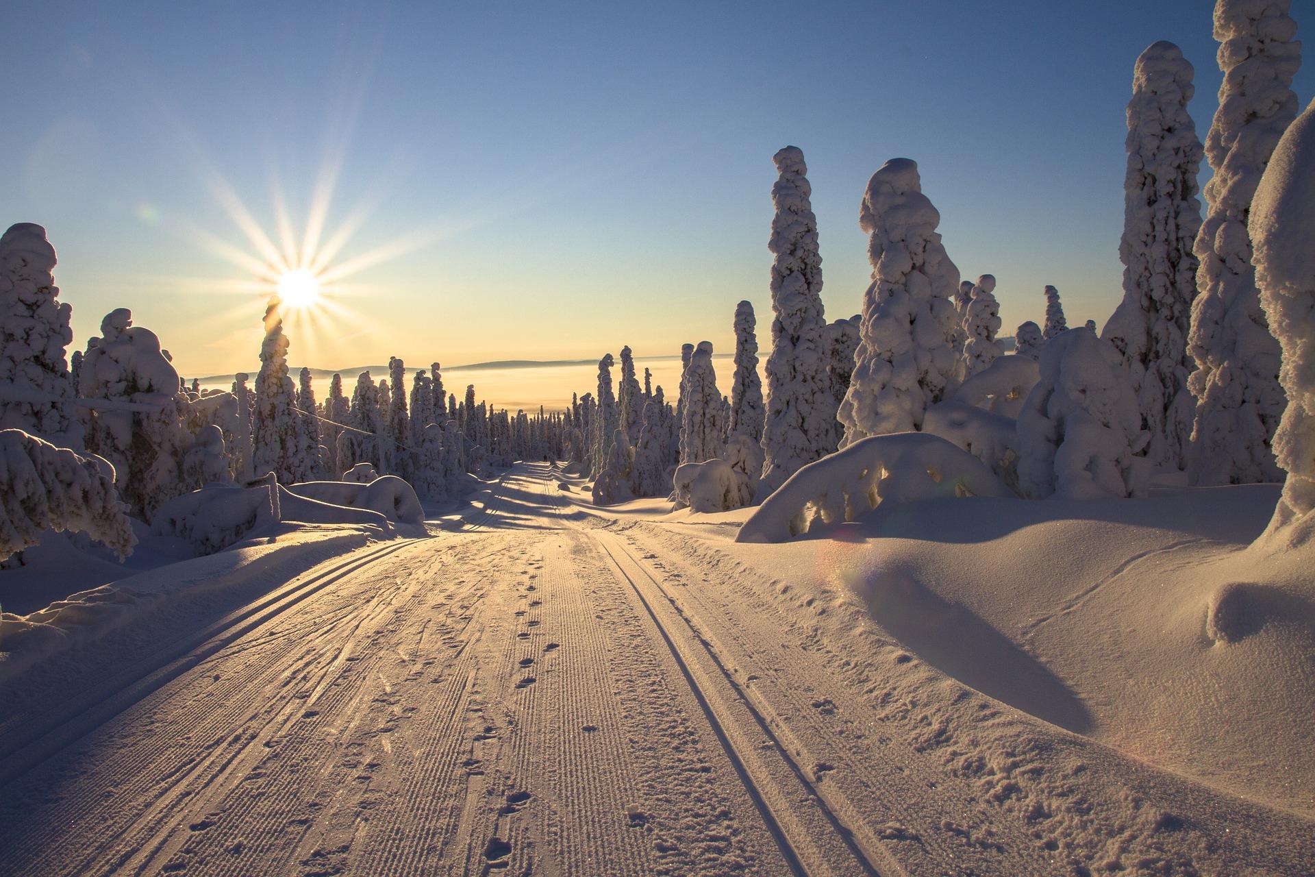 Winter Wonderland in Lapland