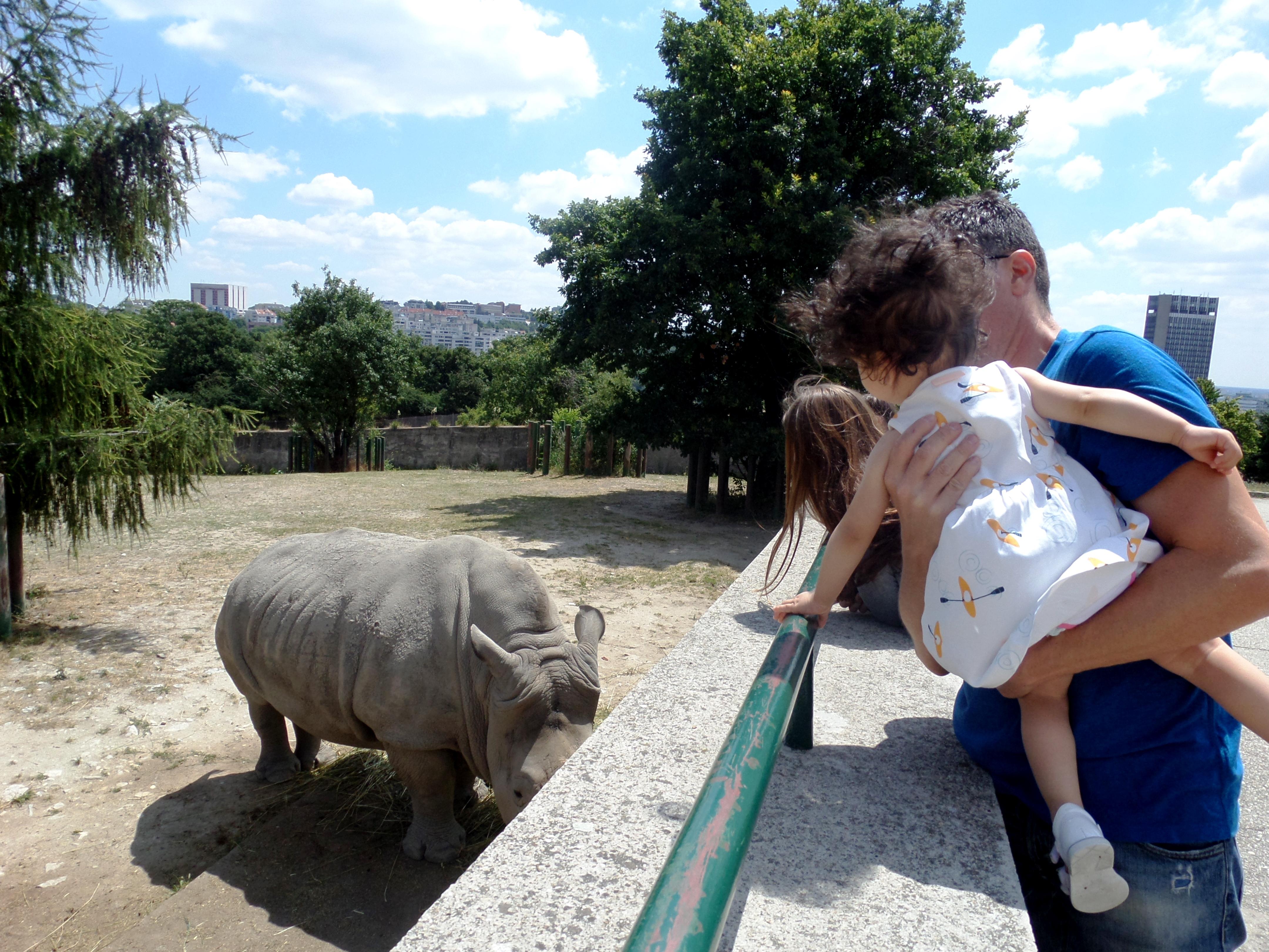Zoo of Bratislava