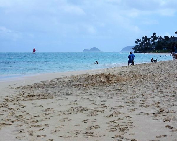 A beautiful beach near Lanikai