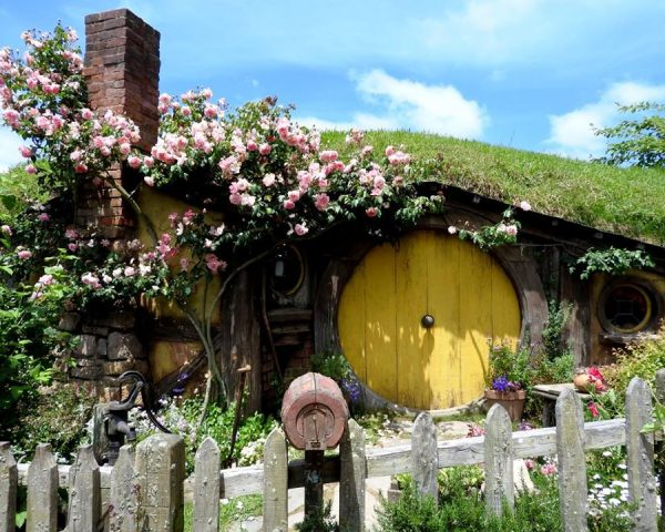 Another beautiful house at Hobbiton Movie Set