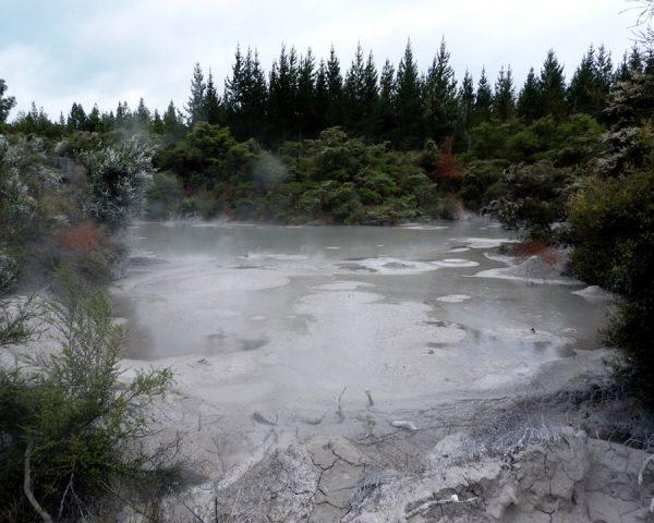 Around Rotorua