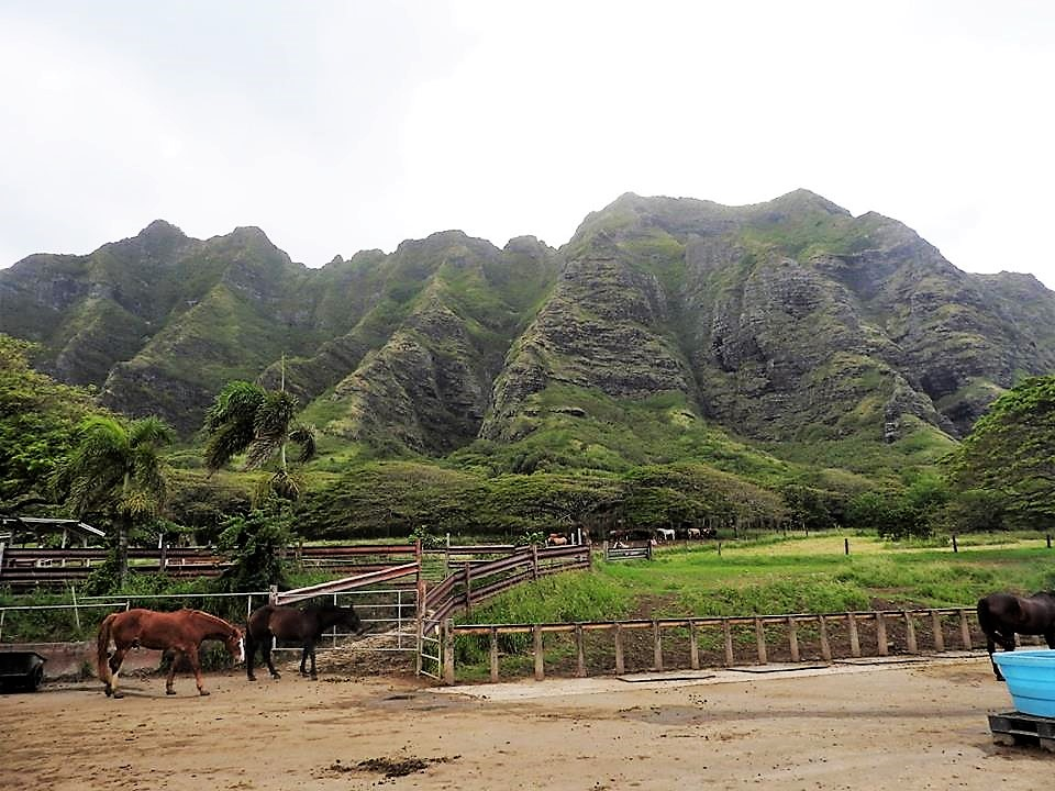 Kualoa Ranch & Private Nature Reserve