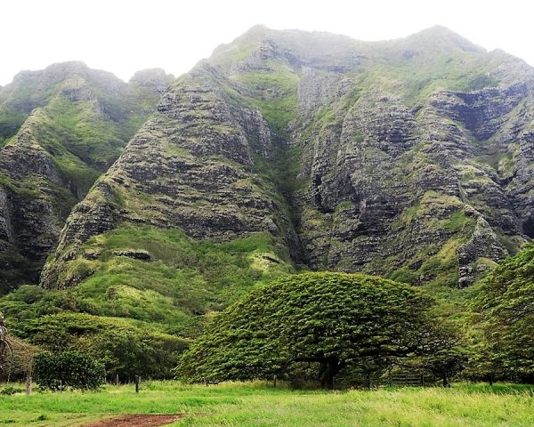 Mountains at Kualoa Ranch & Private Nature Reserve