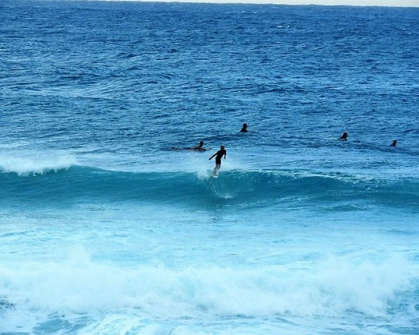 Surfing in Oahu