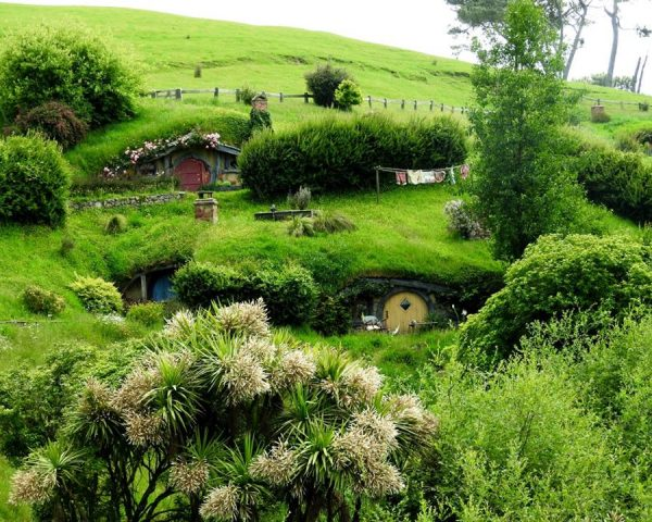 The Movie Set of Hobbiton