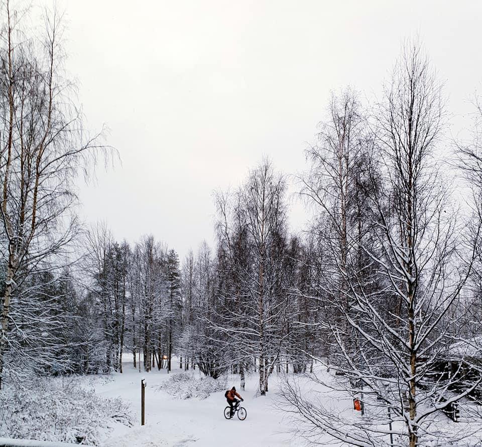 Landscape of Lapland Finland