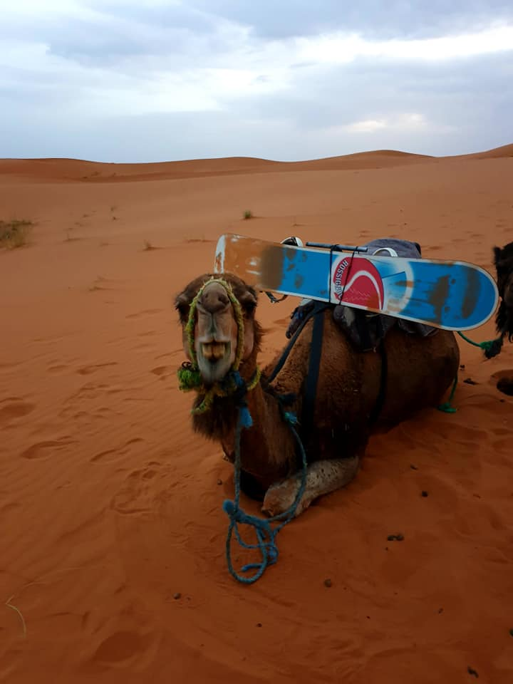 A friend in Merzouga