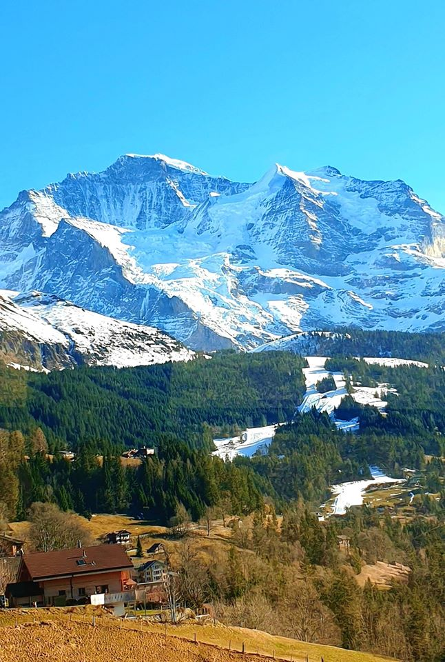 The Swiss Alps in Grindelwald